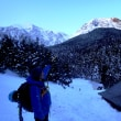 阿弥陀岳:樹林帯を越えて