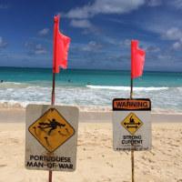 ストロングカレント。ハワイの海。