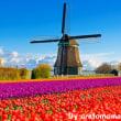 古歌顧裏:24 オランダ民謡