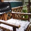 粉雪から綿雪へ…