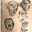 朗らかなチンパンジー