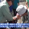 【話題】『沖縄ヘイト反対!権力の行使すんな!って言ってる人たちは、こういう暴力にはなんも言わんのよね…』