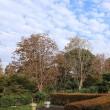千葉市都市緑化植物園(1)