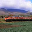 浅間山をバックに しなの鉄道115系