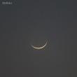 明けの明星、月、SN2014J