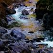 鳩ノ巣渓谷(奥多摩)の秋