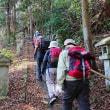 湯河原・幕山公園寒梅と城山ハイキング(神奈川県)