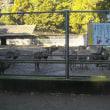 初冬の千葉・茨城の社寺巡りと犬吠埼観光;第2日目(2);鹿島神宮参拝