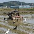宮崎では、田植えの準備が…