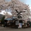 芦ノ牧温泉駅の様子(平成28年4月15日(金))