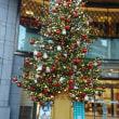 人気です!木の実飾りのアンヘンクゼル