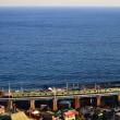 相模湾の水平線を望む