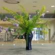 ・町田市民ホール・ロビー展示(キバデマリ)