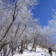 2018/01 真冬の赤城山 ~雪の華(レベル2)~