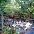 秋ば満喫(黒川温泉と阿蘇の旅)part1