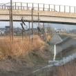 田原町駅と福鉄各駅(市役所前・新駅・南越線?)の整備