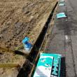 田んぼに肥料と牛ふん散布作業