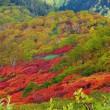 大雪山 紅葉ハイキング 2017 ③ 北海岳~下山まで
