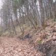 利別フンベ山散歩