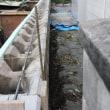 庭のブロック塀工事 10