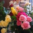 薔薇の花(^^♪