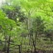 【2010年ラスト 利根川水系】世情編 Part2