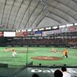 巨人阪神戦、ドームに来ています。阪神の応援すごい。