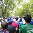第38回千歳JAL国際マラソンを走ってきました(1)