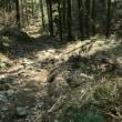 八王子丘陵にある神籠石(かわご石)を見に行ってきた。