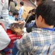 余丁町小学校脱穀授業(11/13)