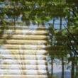 箱根の夏休み_05:ハイアットの朝ごはん