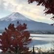 富士河口湖もみじまつり終わる