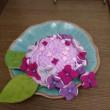 がく紫陽花