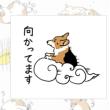 雲中供養菩薩布巾と涅槃図動物手拭い
