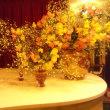 シャンソン歌手リリ・レイLILI LEY  人生のゆとりの時間 シャンソン芸術の豊かさ 色彩と音と語感の感性が 日常に浸透
