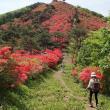 徳仙丈山へ今年、二回目行きました。5/21