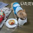 誕生日ケーキと手作りご飯どっちから食べる?