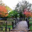 紅葉狩り エドウインダン記念公園