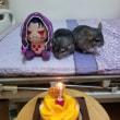 廖大包生日快樂