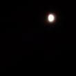 今、木星と仲良しのお月様が空に!
