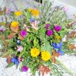 野の花 アレンジメント