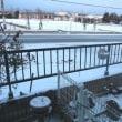 また雪の朝です