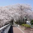 あっという間に桜散る季節に・・・