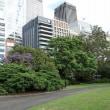 ロイヤル・ボタニック・ガーデン(シドニー)