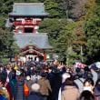 鎌倉日記35・・・鶴岡八幡宮