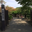第83話 人生初の函館旅行(五稜郭タワー&公園編)
