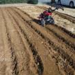 ダイコン埋め保存と切干ダイコン  耕運作業
