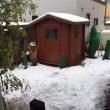 2017初雪かき