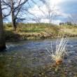 19-04-12 北上高地の川