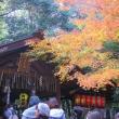 紅葉狩り in 嵐山 3 (宝厳院)